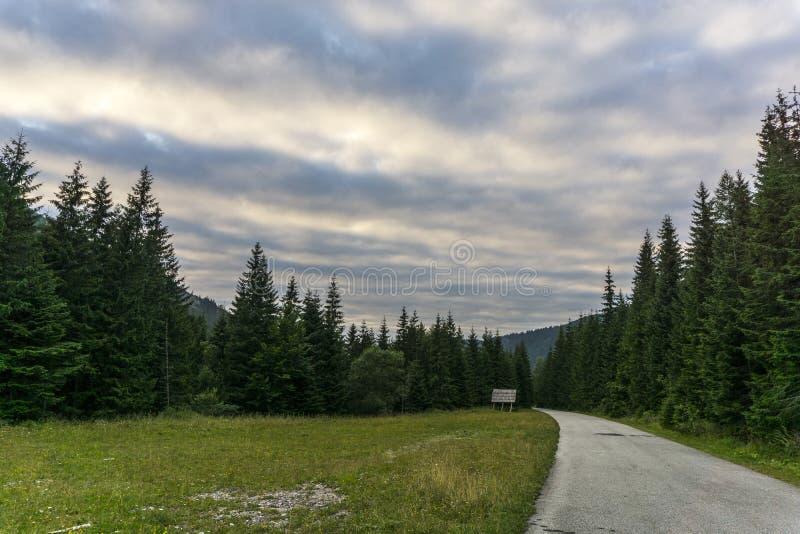 从足迹西部Tatra山斯洛伐克的看法 库存照片