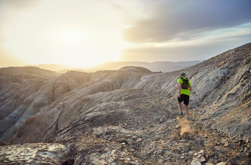 足迹赛跑在沙漠 库存图片