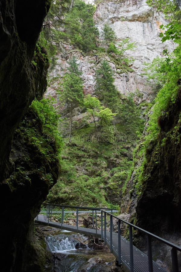 足迹通过峡谷 免版税库存照片