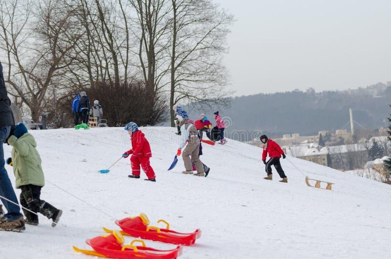 活跃儿童乐趣在小山的冬天与爬犁 免版税图库摄影