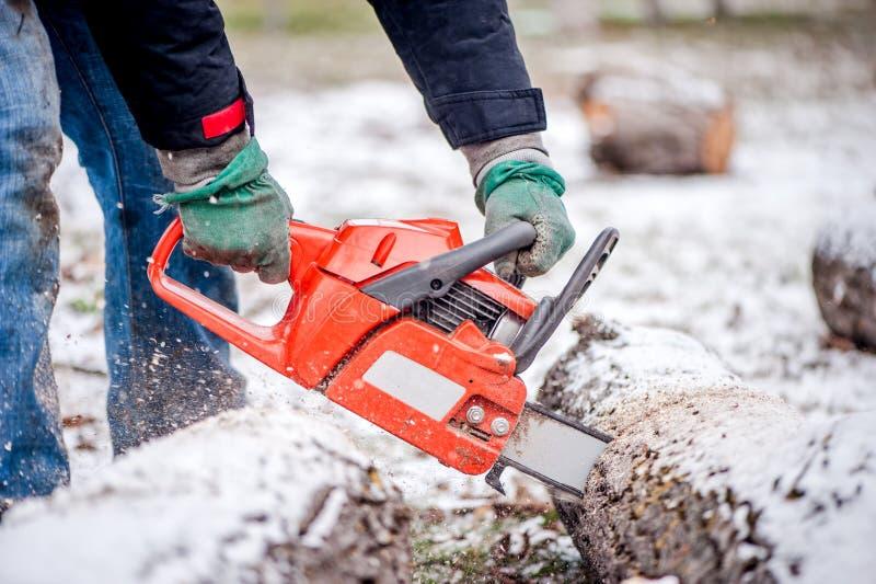 活跃男性工作者切口木柴特写镜头从多雪的树的 免版税库存图片