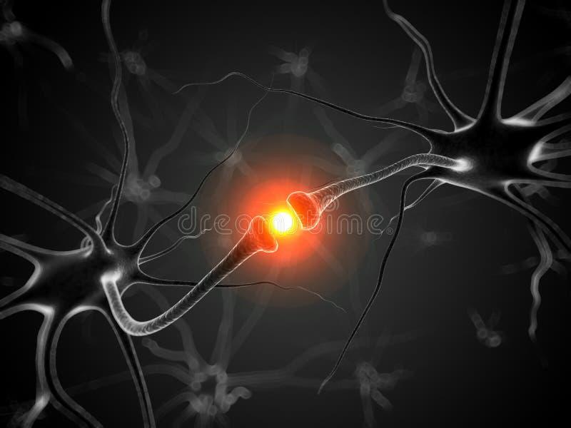 活跃神经元 皇族释放例证