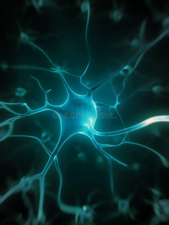 活跃神经细胞 向量例证