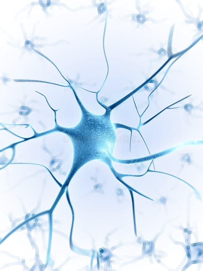 活跃神经细胞 皇族释放例证
