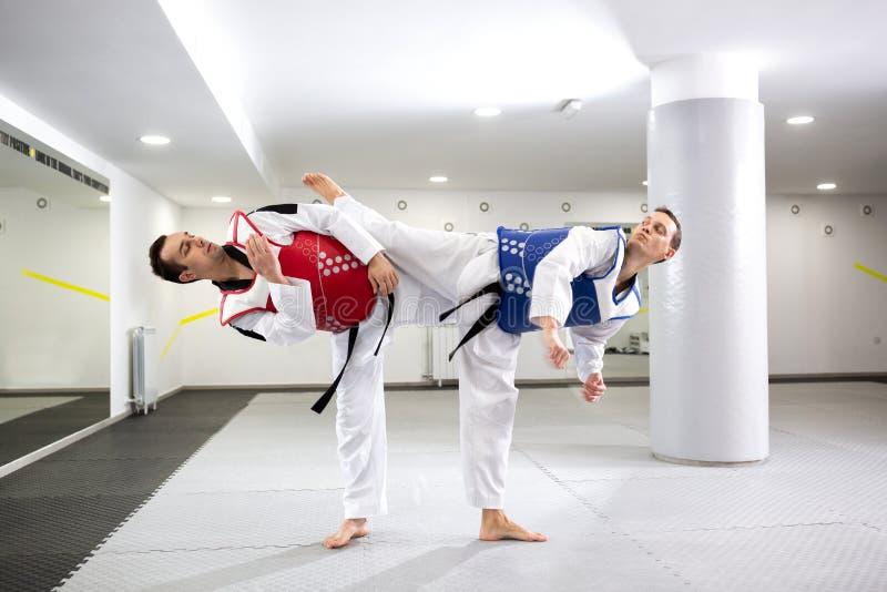 跆拳道作战的两个人 免版税库存照片