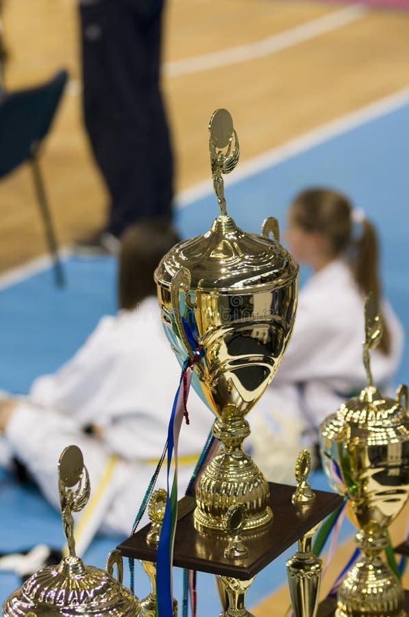 跆拳道冠军杯子 免版税库存照片