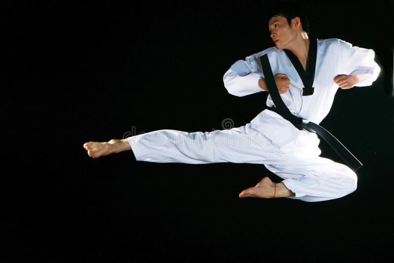 跆拳道 免版税库存照片