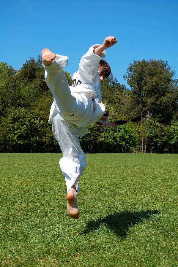 跆拳道 库存图片
