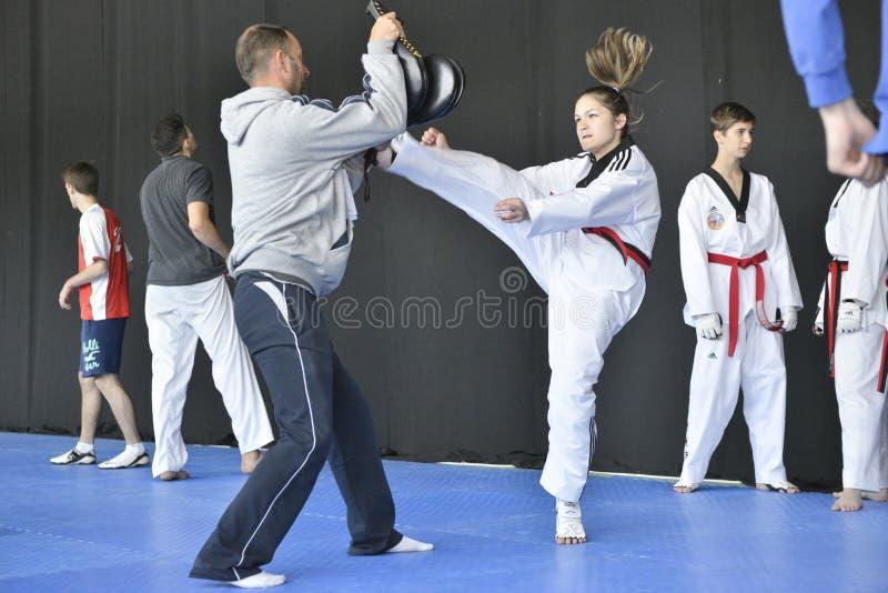 跆拳道wtf比赛 库存图片