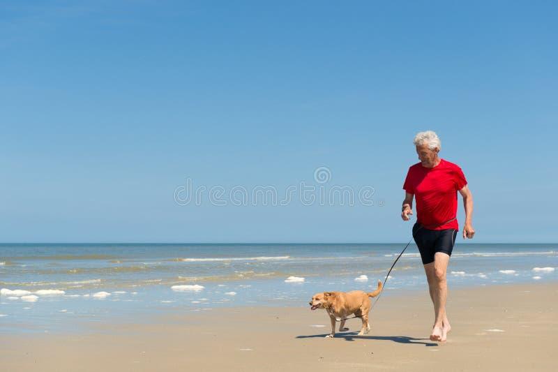 跑与狗在海滩 库存图片