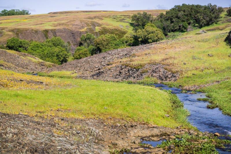 跑在北部桌山生态储备,奥罗维尔,加利福尼亚嫩绿的平原的季节性小河  免版税库存图片
