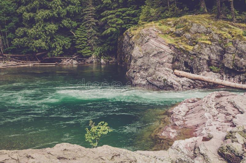 跑在小河的河小河 免版税库存图片