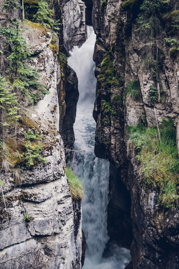 跑在山坡下的水小河 免版税图库摄影