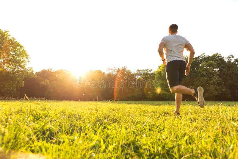 跑在日落期间的一个英俊的年轻人在公园 免版税库存照片