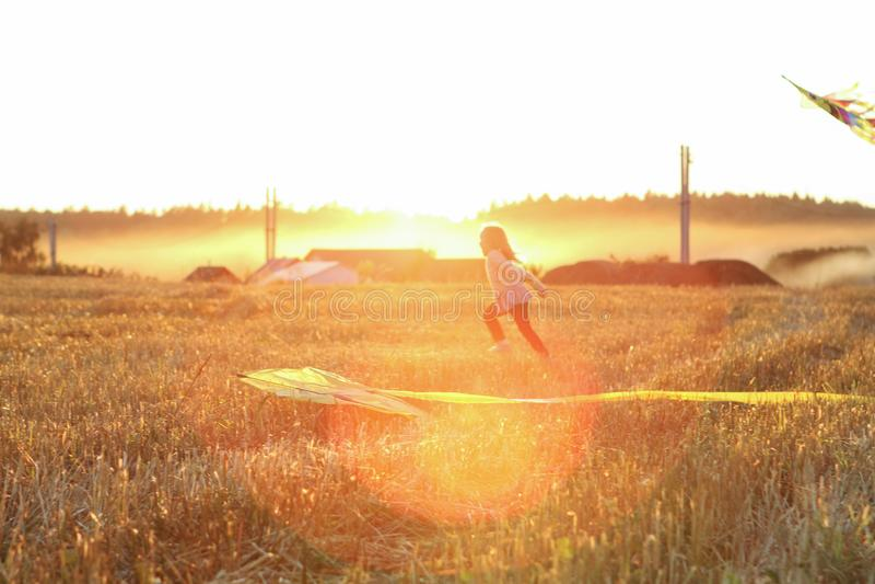 跑在有一只风筝的草甸在自然的夏天 免版税库存图片