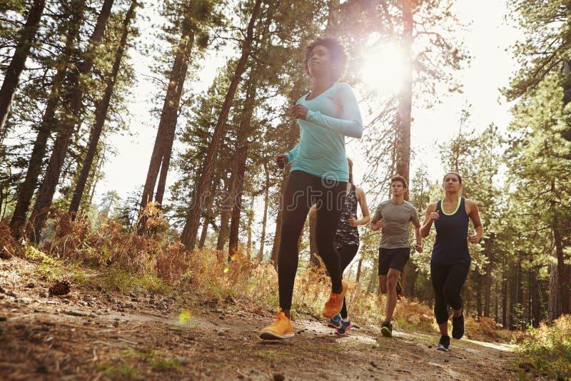跑在森林里的小组四个成人,低角度视图 库存图片