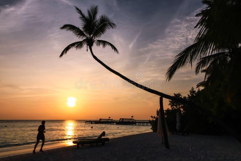 跑在海滩的妇女在马尔代夫海岛度假村的日落 免版税库存图片