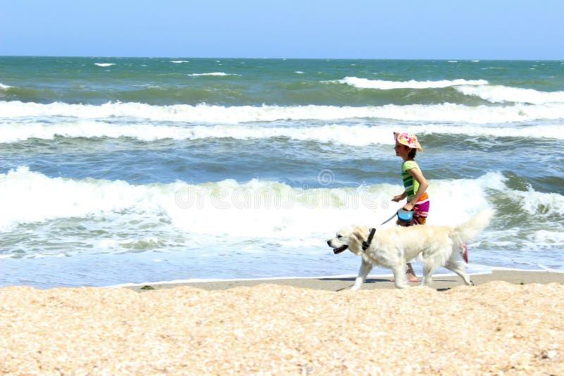 跑在海滩的年轻小女孩和金毛猎犬狗 免版税库存图片