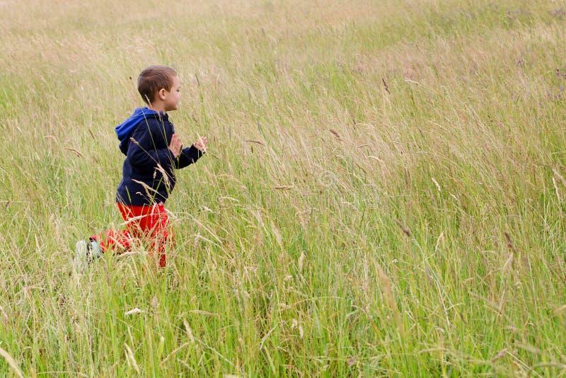 跑在草甸的孩子 库存图片