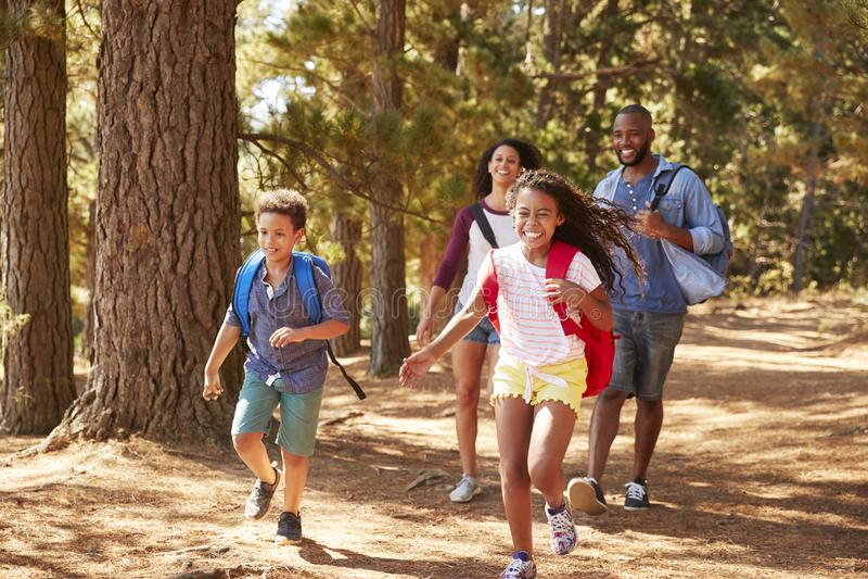 跑在远足冒险的家庭的父母前的孩子 库存照片