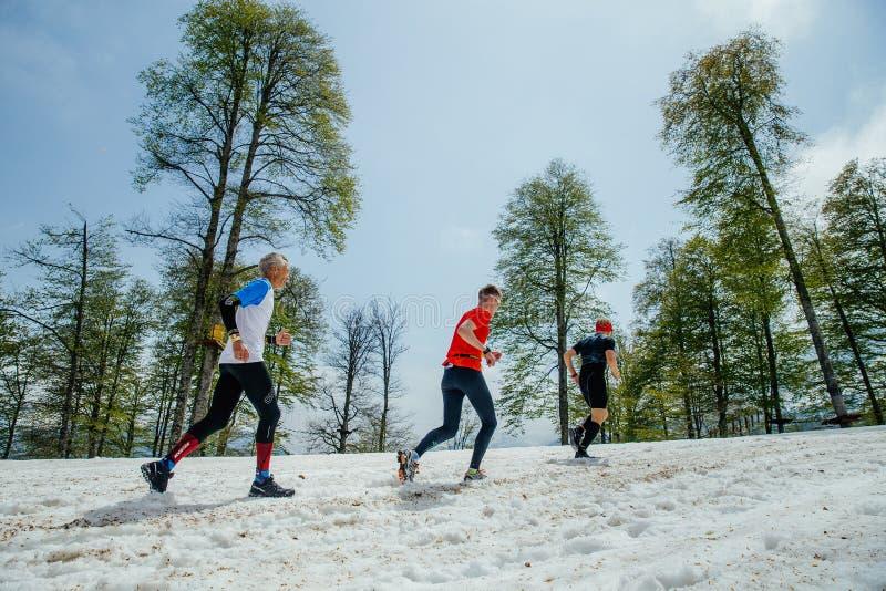 跑多雪的山行迹的三个人赛跑者 免版税库存照片