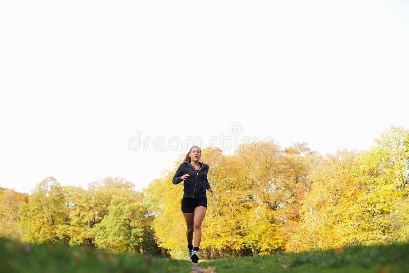 跑步在公园的健身妇女 免版税库存照片