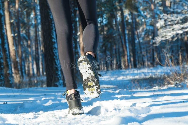 跑步在冬天 跑通过雪 奔跑森林雪 免版税库存图片