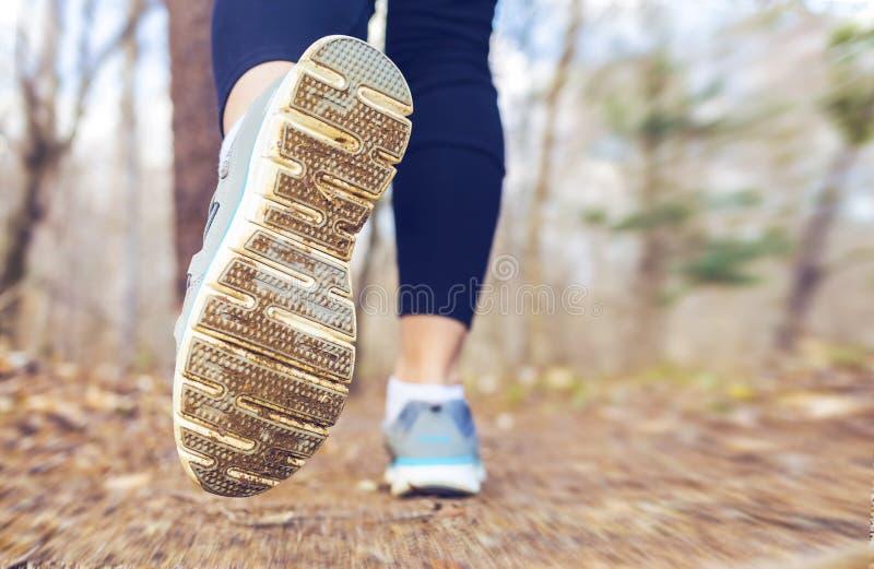跑步在秋天的森林里的妇女 库存照片