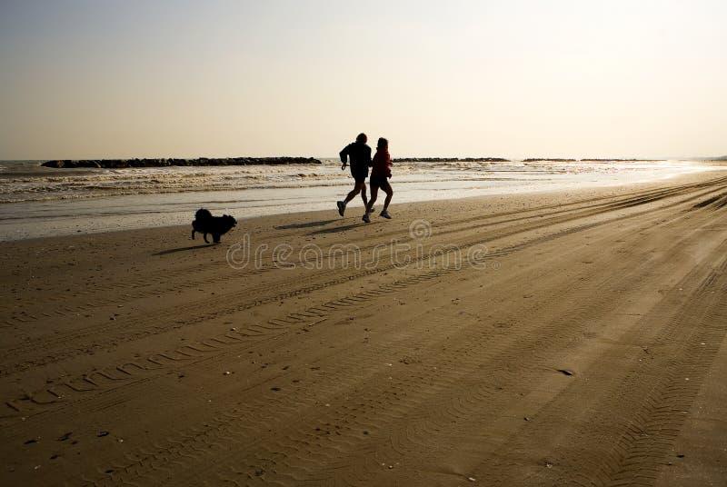 跑步的人一起妇女 图库摄影