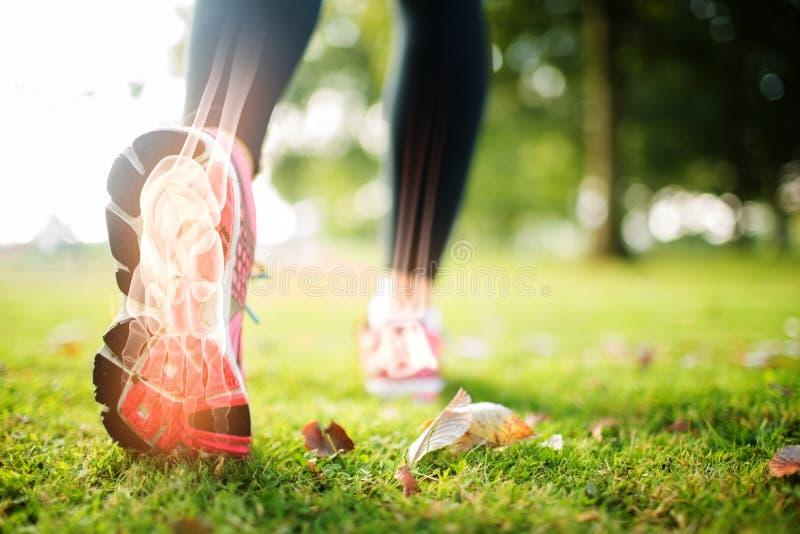跑步的妇女的被突出的脚骨头 图库摄影