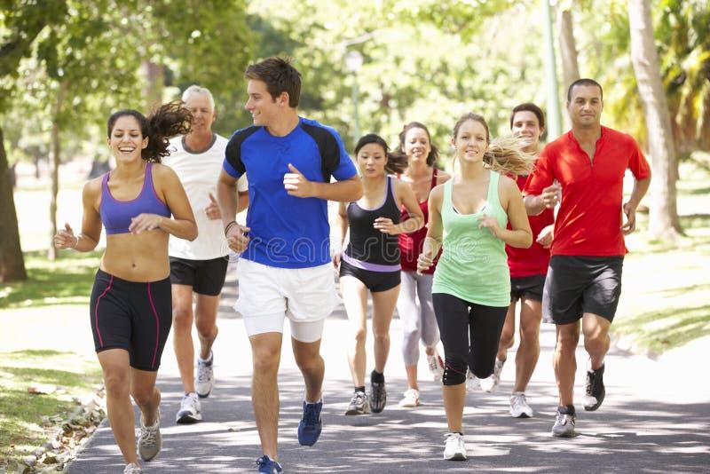 跑步通过公园的小组赛跑者 免版税库存照片