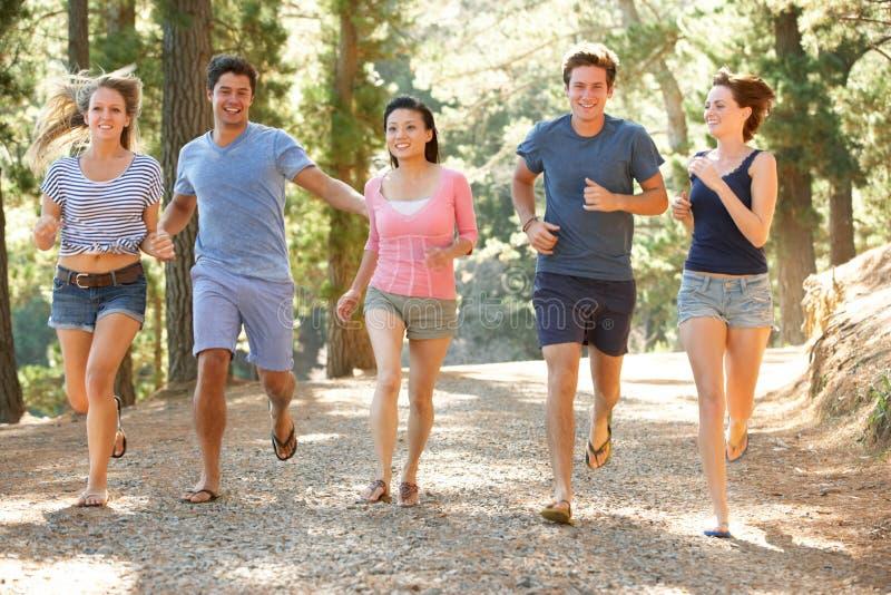 跑沿国家道路的小组青年人 免版税库存图片