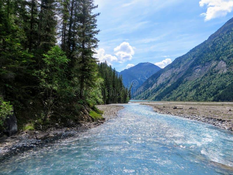 跑通过一个谷和森林的一条美丽的干净的蓝色河在罗布森山省公园的遥远的原野 图库摄影
