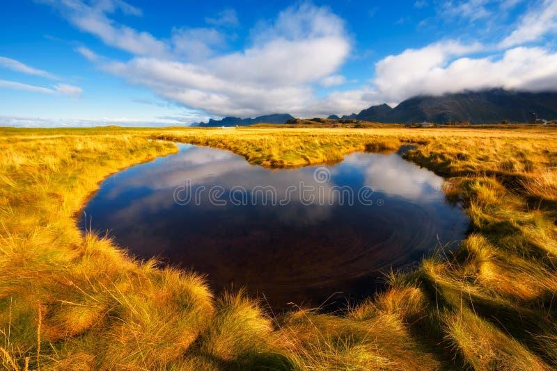 跑通过在Lofoten海岛上的北欧自然的小小河 库存照片