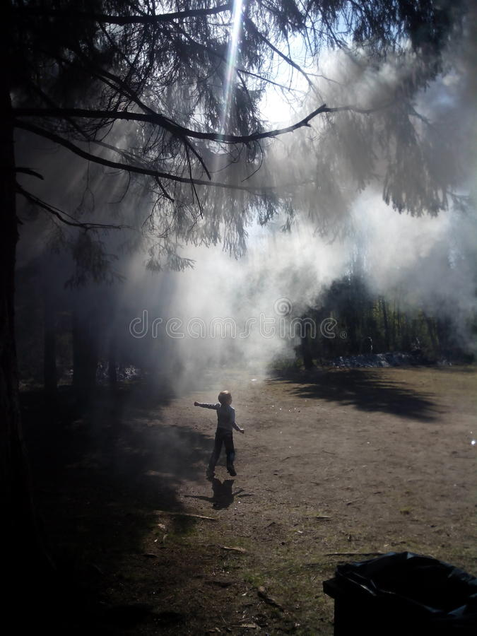 跑通过森林的小男孩覆盖在烟 免版税库存照片