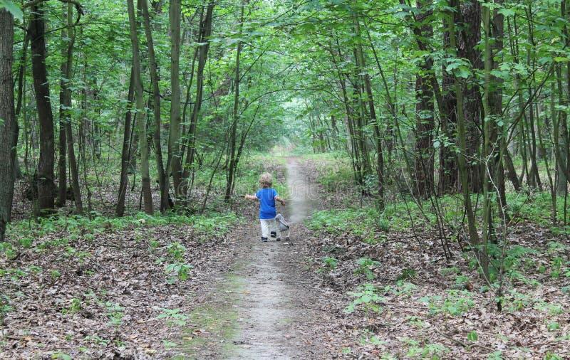 跑通过森林的男婴 免版税图库摄影