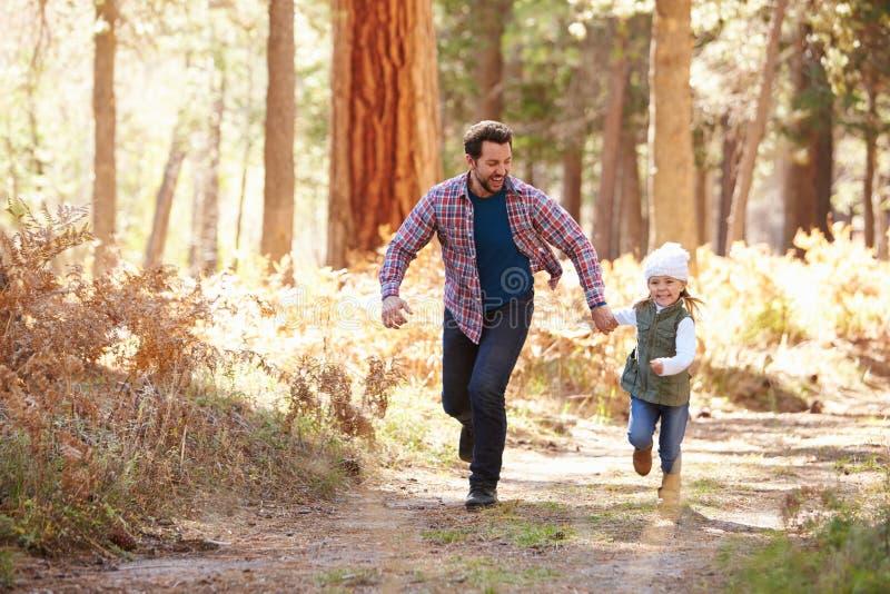 跑通过秋天森林地的父亲和女儿 免版税图库摄影