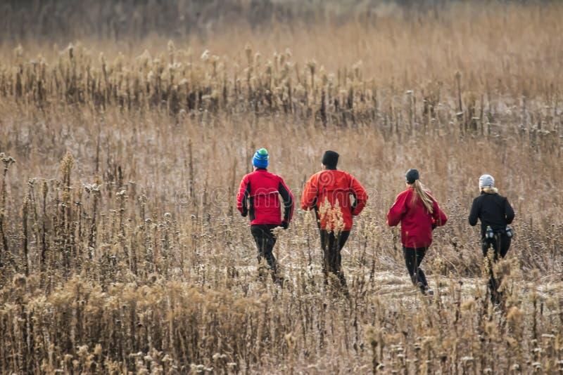 跑通过领域的慢跑者 库存照片