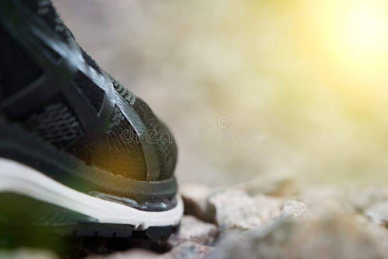 跑鞋在公园,特写镜头运动鞋 在实践前的跑鞋 体育活跃生活方式概念 太阳射线光 库存照片