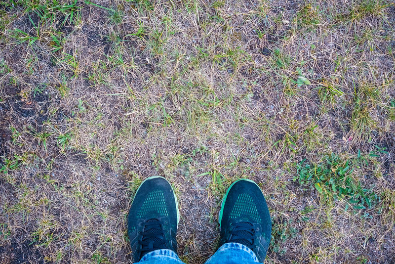 跑鞋特写镜头在草-概念图象的 库存图片