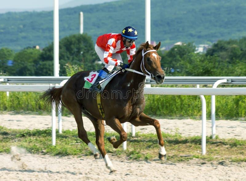 跑马在五山城 免版税库存图片