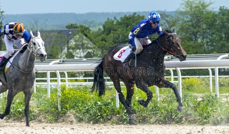 跑马在五山城 免版税图库摄影