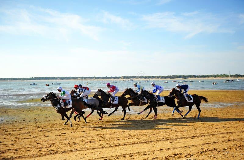 跑马在Sanlucar de Barrameda,西班牙 免版税库存照片