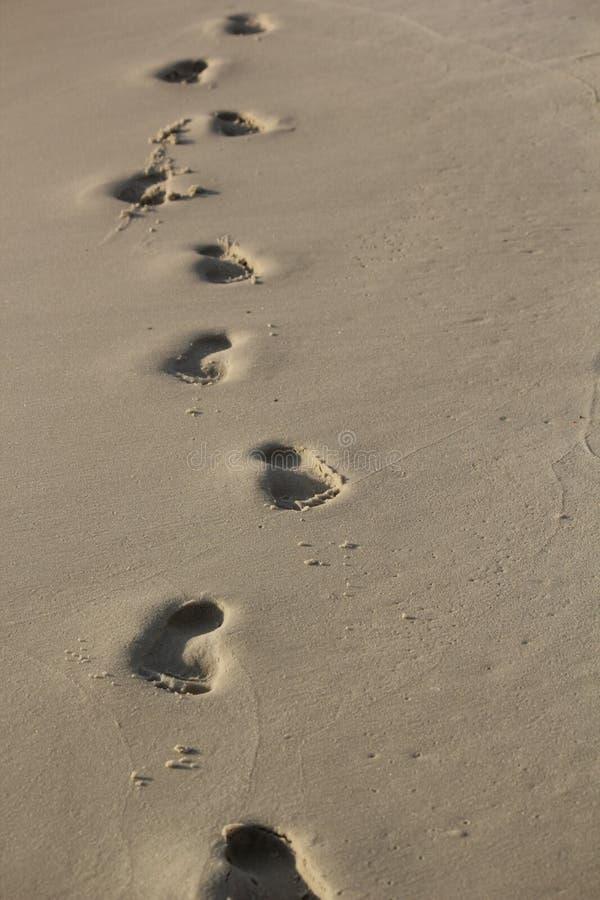 跟随海滩脚印 免版税库存照片