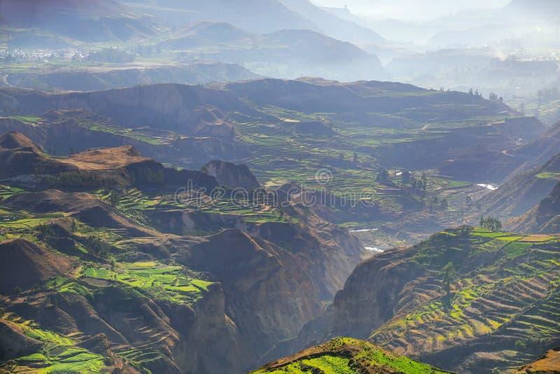 跨步的大阳台与早晨在科尔卡峡谷,秘鲁使模糊 库存照片