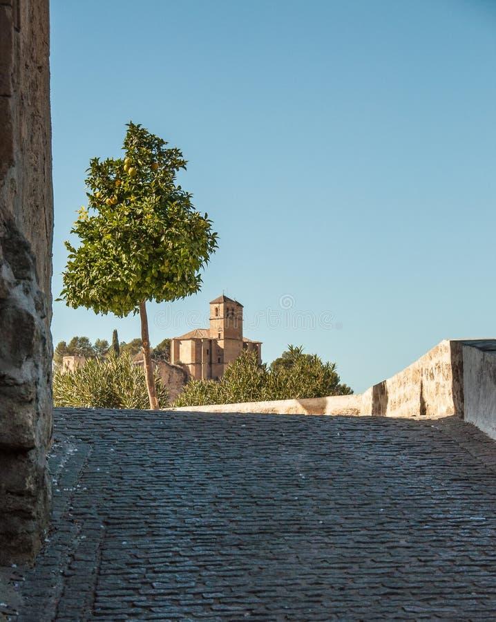路、教堂和柠檬树 图库摄影