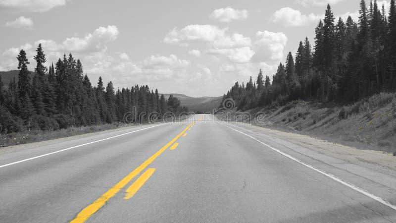 路上的黄线 免版税图库摄影
