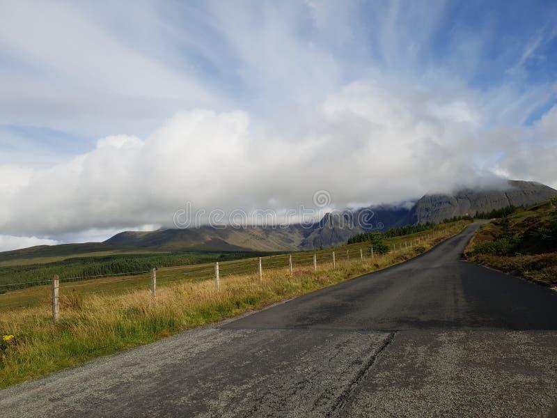 路以山和深绿色风景 库存图片
