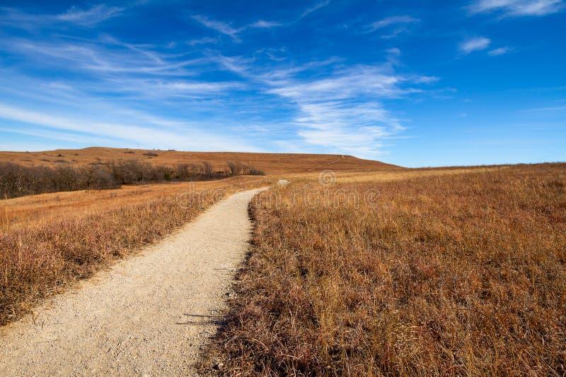 路到大草原里 库存照片