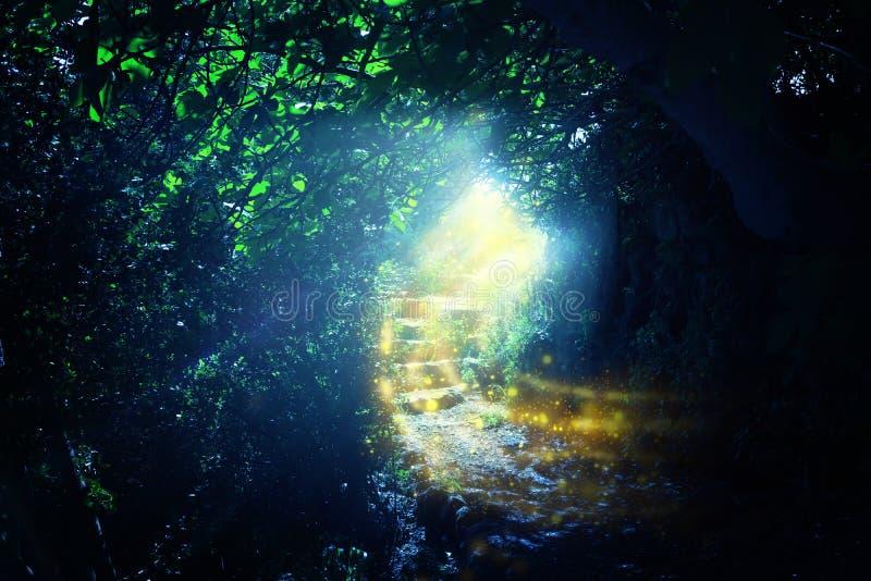 路和石台阶在有神秘的太阳光和萤火虫的不可思议和神奇黑暗的森林里 童话当中概念 向量例证